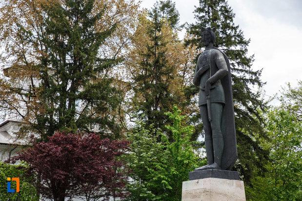 imagine-din-lateral-cu-statuia-lui-mircea-cel-batran-din-ramnicu-valcea-judetul-valcea.jpg