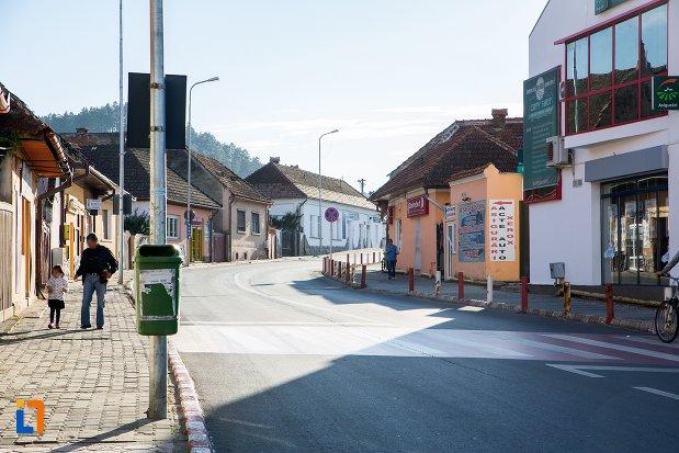 imagine-din-orasul-sacele-judetul-brasov.jpg