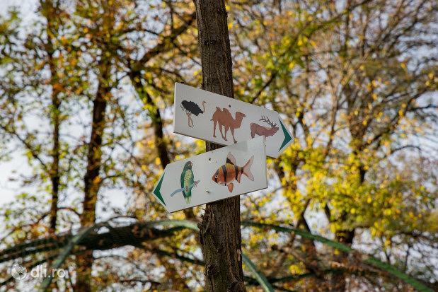 indicatoare-din-gradina-zoologica-din-oradea-judetul-bihor.jpg