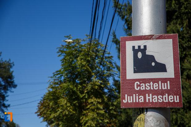 indicator-cu-castelul-iulia-hasdeu-din-campina-judetul-prahova.jpg