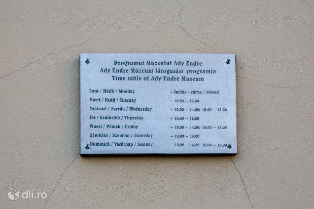 informatii-de-pe-muzeul-memorial-ady-endre-din-oradea-judetul-bihor.jpg