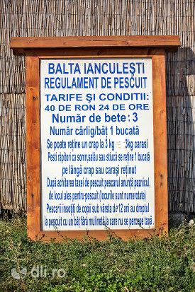 informatii-despre-pescuit-pe-lacul-ianculesti-judetul-satu-mare.jpg