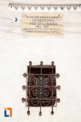 inscriptie-de-la-casa-mamoriala-ic-parhon-din-campulung-muscel-judetul-arges.jpg