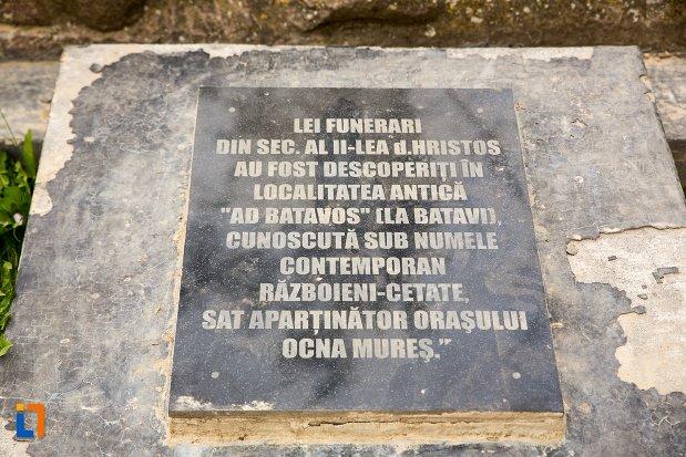 inscriptie-de-la-leii-funerari-din-ocna-mures-judetul-alba.jpg