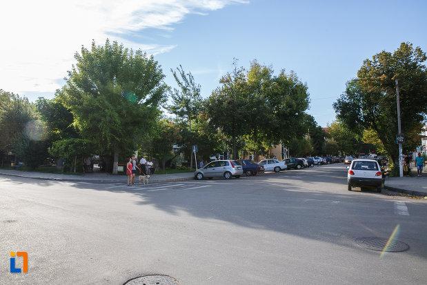 intersectie-din-orasul-mizil-judetul-prahova.jpg