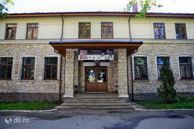 intrarea-in-muzeul-tarii-oasului-din-negresti-oas-judetul-satu-mare.jpg