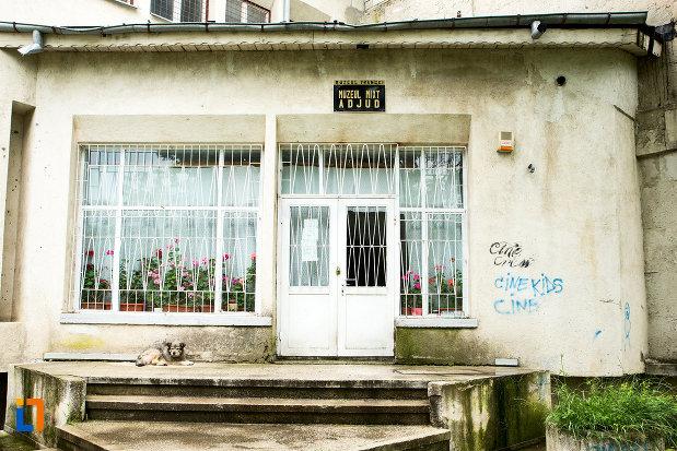 intrarea-in-muzeul-vrancei-din-adjud-judetul-vrancea.jpg