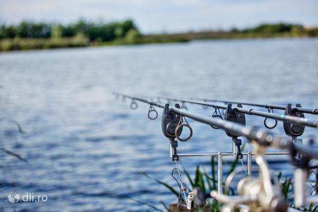 la-pescuit-pe-lacul-ianculesti-judetul-satu-mare.jpg