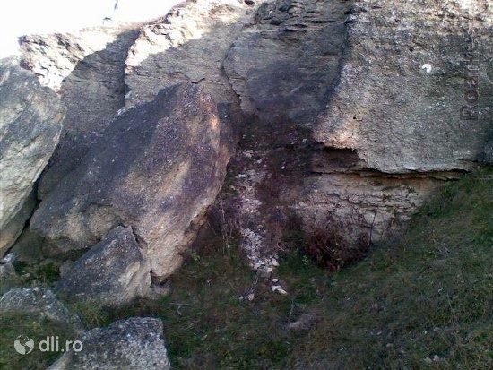 lacul-fosilier-dealul-repedea.jpg