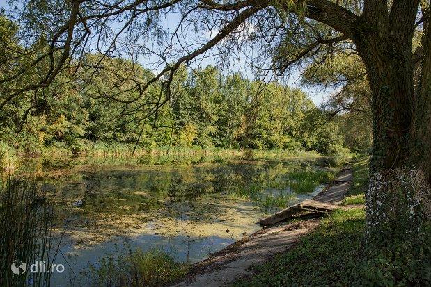 lacul-noroieni-din-zona-de-agrement-padurea-noroieni-judetul-satu-mare.jpg