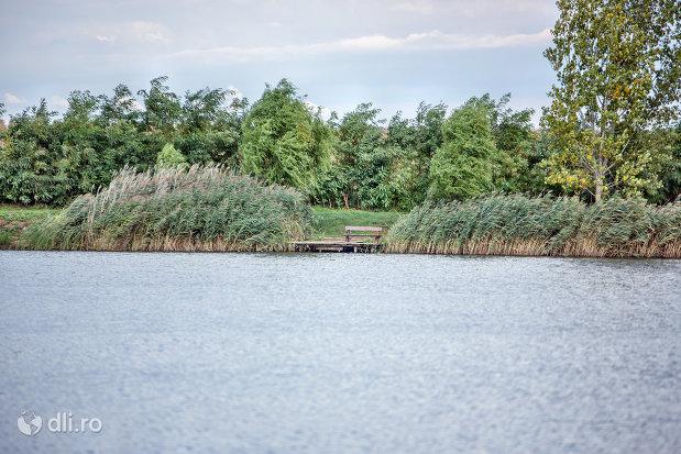 luciu-de-apa-pe-lacul-ianculesti-judetul-satu-mare.jpg