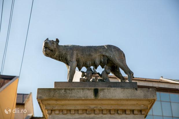 lupul-romulus-si-remus-statuia-lupoaica-din-zalau-judetul-salaj.jpg