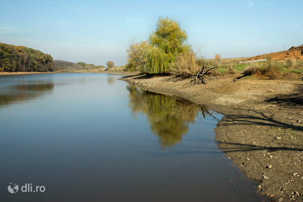 malul-opus-lacul-cocis-din-sacuieni-judetul-bihor.jpg