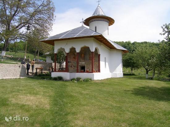 manastirea-carnu.jpg