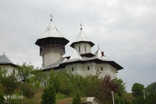 manastirea-crisan.jpg