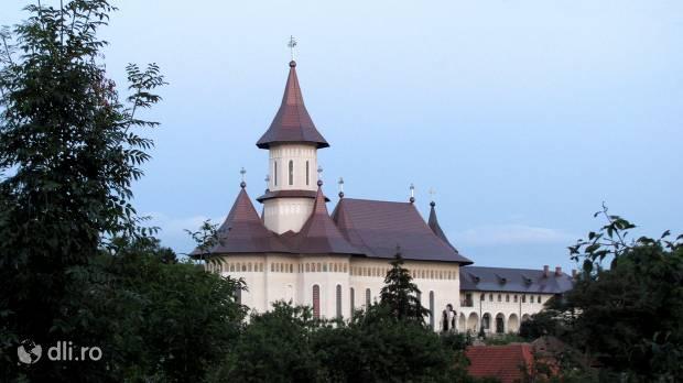 manastirea-feleacu.jpg