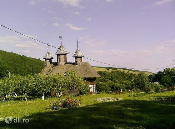 manastirea-parvesti-vaslui.jpg