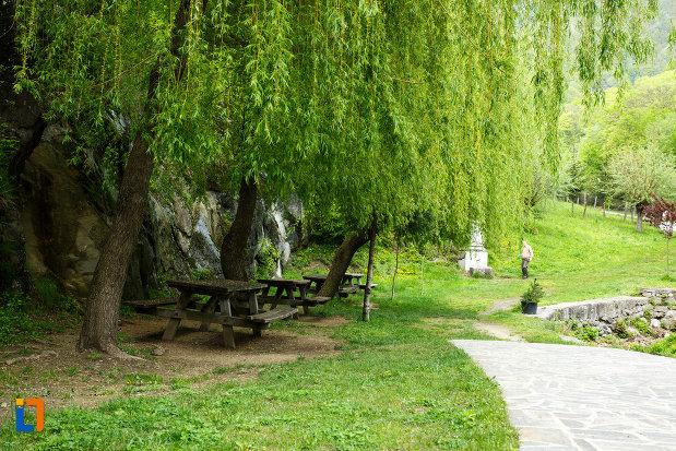 manastirea-turnu-din-pausa-judetul-valcea-salcie-ce-adaposte-bancute-pentru-odihna.jpg