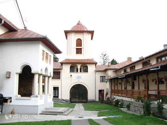 manastirea-viforata.jpg