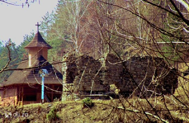 manastirea-visina.jpg