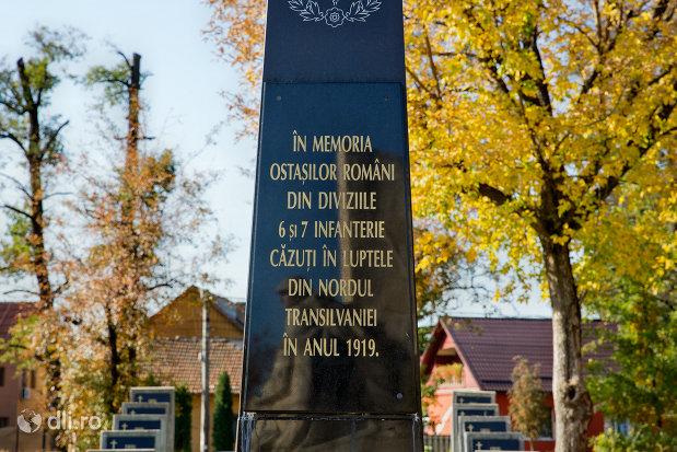 monumentul-din-cimitirul-comemorativ-din-baia-mare-judetul-maramures.jpg
