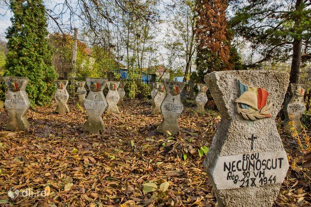 mormantul-ostasului-necunoscut-din-parcul-eroilor-din-salajeni-judetul-salaj.jpg
