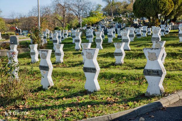 mormintele-din-cimitirul-eroilor-din-zalau-judetul-salaj.jpg