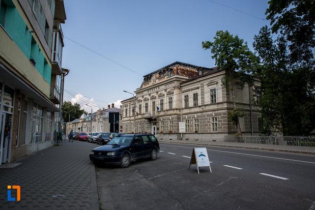 muzeul-arta-lemnului-din-campulung-moldovenesc-judetul-suceava-vazut-din-departare.jpg