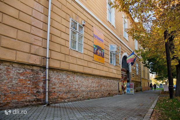 muzeul-de-arta-din-baia-mare-judetul-maramures-vedere-din-lateral.jpg