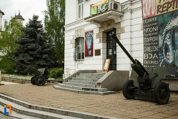 muzeul-de-istorie-din-ramnicu-valcea-judetul-valcea-arma-de-razboi.jpg