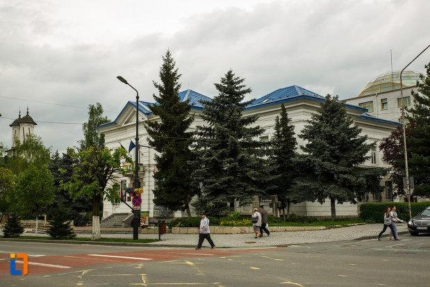muzeul-de-istorie-din-ramnicu-valcea-judetul-valcea-fotografiat-de-la-distanta.jpg