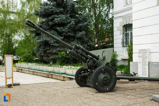 muzeul-de-istorie-din-ramnicu-valcea-judetul-valcea-poza-cu-arma-de-lupta.jpg