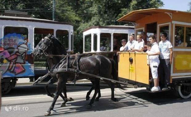 muzeul-de-transport-public-corneliu-miklosi.jpg