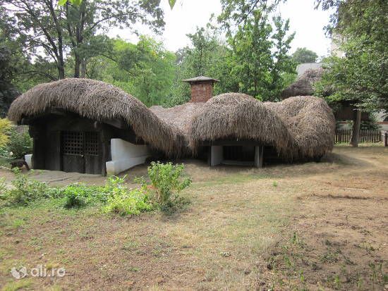 muzeul-national-al-satului-dimitrie-gusti.jpg
