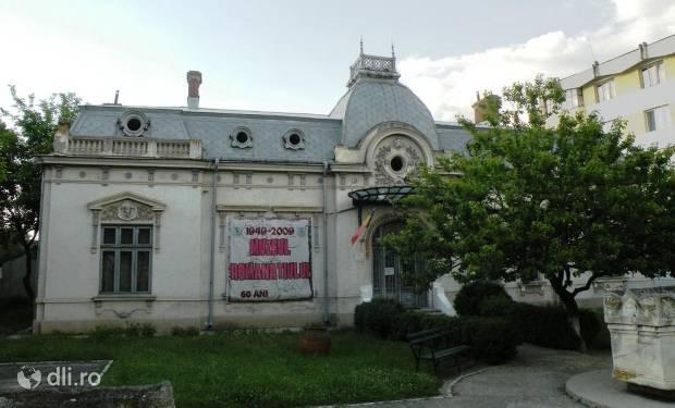 muzeul-romanatiului-din-caracal.jpg