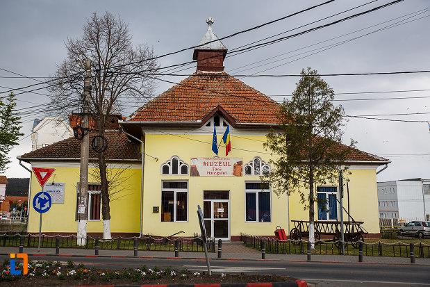 muzeul-tarii-hategului-din-hateg-judetul-hunedoara.jpg