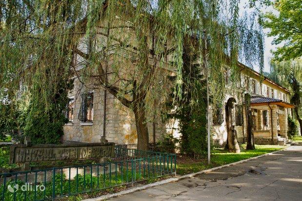 muzeul-tarii-oasului-din-negresti-oas-judetul-satu-mare.jpg