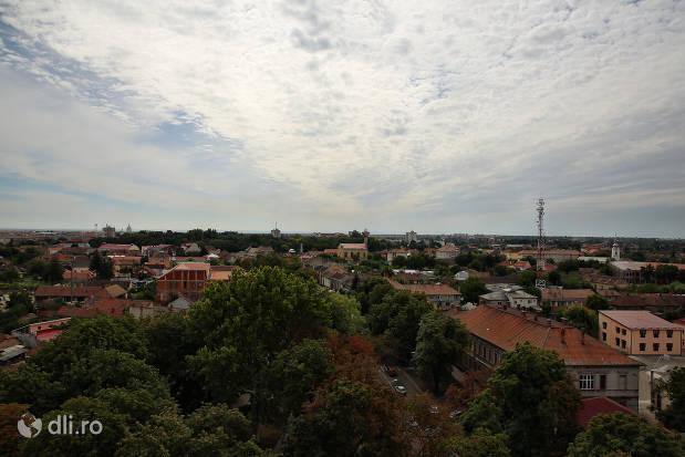 orasul-carei-copaci-ci-cladiri-vazute-de-sus.jpg