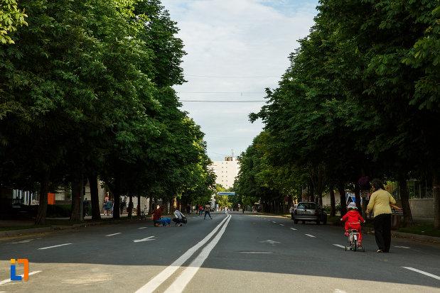 orasul-focsani-judetul-vrancea-bulevard-central.jpg