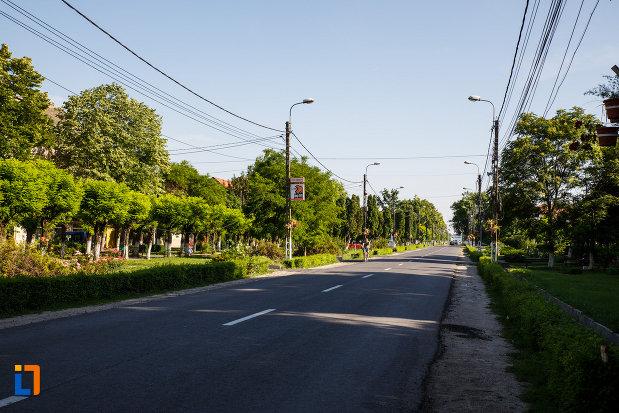 orasul-jimbolia-judetul-timis-drumul-principal.jpg