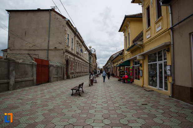 orasul-lugoj-judetul-timis-pietonala-cu-bancute.jpg