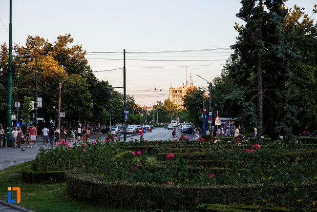 orasul-timisoara-judetul-timis-rondou-cu-flori.jpg