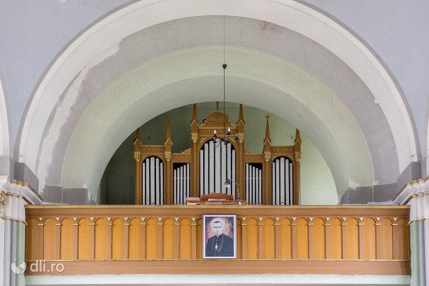 orga-din-biserica-romano-catolica-sf-anton-din-oradea-judetul-bihor.jpg