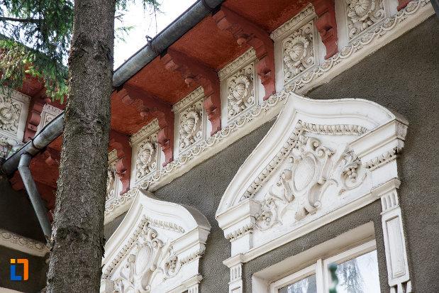 ornamente-de-pe-casa-mamut-1899-din-rosiorii-de-vede-judetul-teleorman.jpg