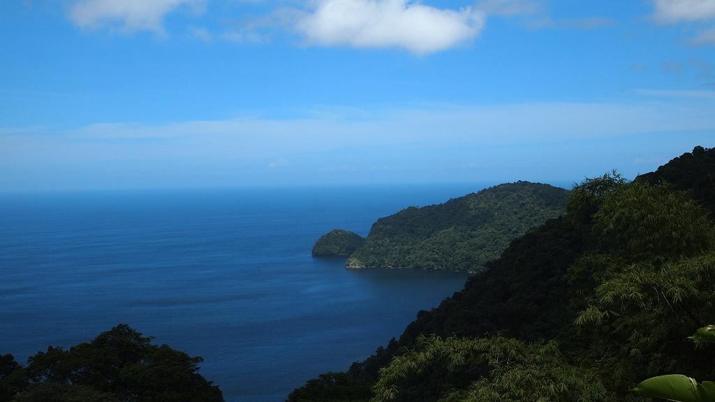 padurea Trinidad Tobago
