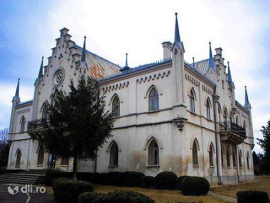 palatul-domnesc-alexandru-ioan-cuza-din-ruginoasa.jpg