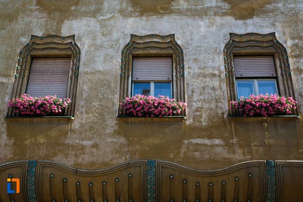 palatul-miksa-steiner-din-timisoara-judetul-timis-ferestre-cu-flori-roz.jpg