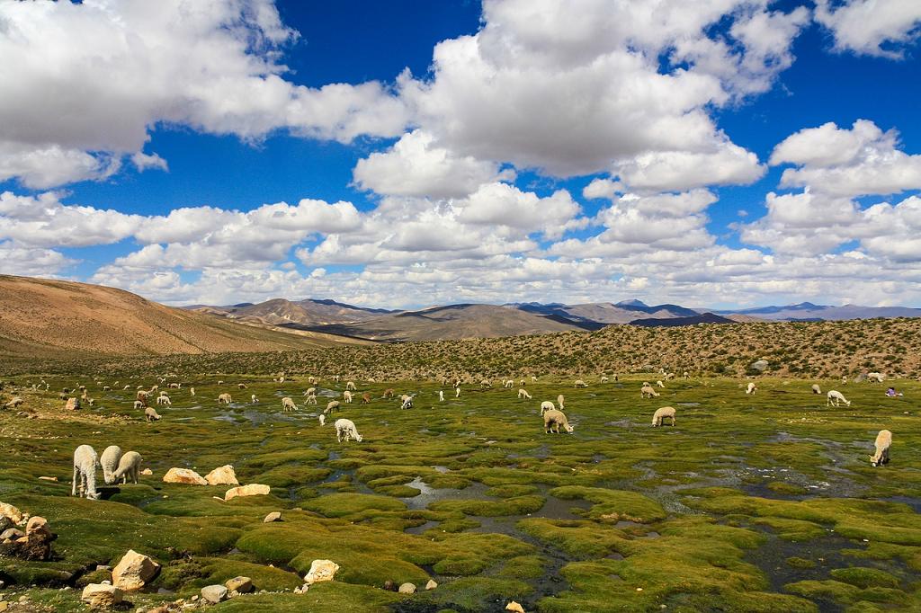 panorama Peru