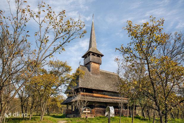 panorama-cu-biserica-de-lemn-din-barsana-monument-istoric-judetul-maramures.jpg