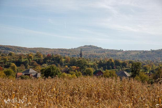 panorama-cu-biserica-de-lemn-din-plopis-judetul-maramures.jpg
